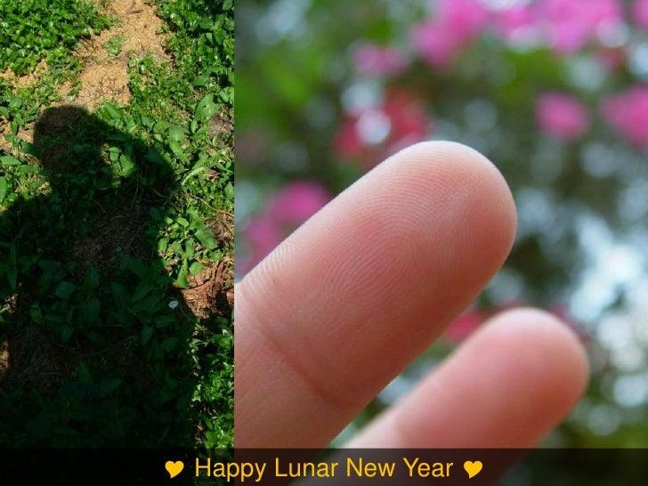 vietnamese lunar brand-new season essay