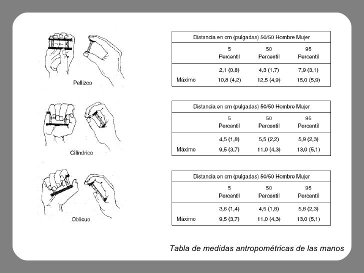 Hapticidad for Tabla de antropometria