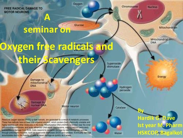 A     seminar onOxygen free radicals and   their Scavengers                           By                           Hardik ...