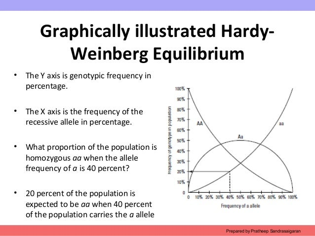hardy weinburg equilibrium This frequency distribution will not change from generation to generation once a  population is in hardy-weinberg equilibrium for example, if the frequency of.