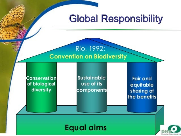 Global Responsibility Rio, 1992: Convention on Biodiversity  Conservation of biological diversity  Sustainable use of its ...