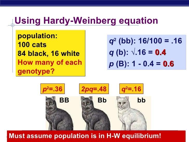 Hardyweinberg – Hardy Weinberg Problems Worksheet