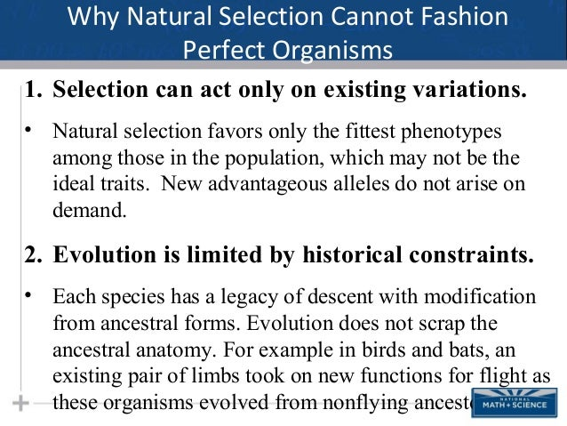 Natural Selection Favors Those Organisms That