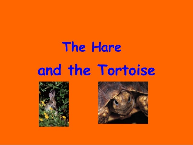 The Hareand the Tortoise