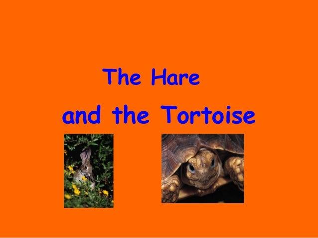 and the TortoiseThe Hare