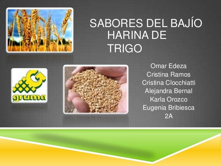 Sabores del bajío<br />Harina de trigo<br />Omar Edeza<br />Cristina Ramos<br />Cristina Clocchiatti<br />Alejandra Bernal...