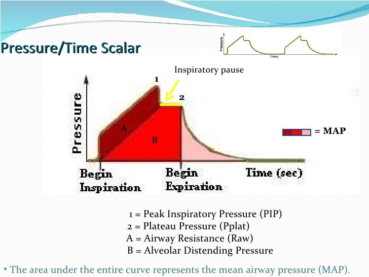 Pressure/Time Scalar A B 1 2 Inspiratory pause = MAP  1 = Peak Inspiratory Pressure (PIP) 2 = Plateau Pressure (Pplat) A =...