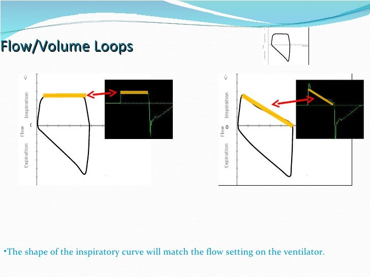 Flow/Volume Loops 0 0 The shape of the inspiratory curve will match the flow setting on the ventilator.