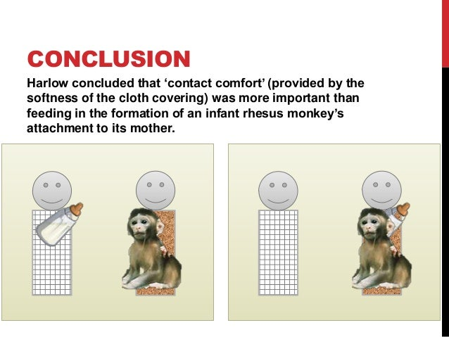Harlow's Studies on Dependency in Monkeys - YouTube