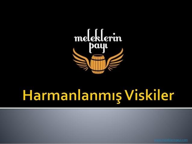 www.meleklerinpayi.com