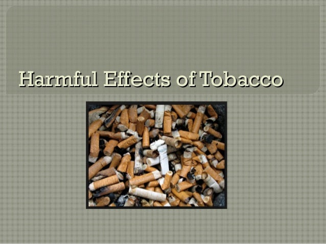 the harmful effects of smoking Harmful effects of smoking 1418 words | 6 pages harmful effects of smoking doan thi huong thao baiu08155 international university hcmc academic english 2 bien thi thanh mai instructor may 17, 2010 abstract smoking is known to be a primary cause of harmful effects on health, family, environment and society.