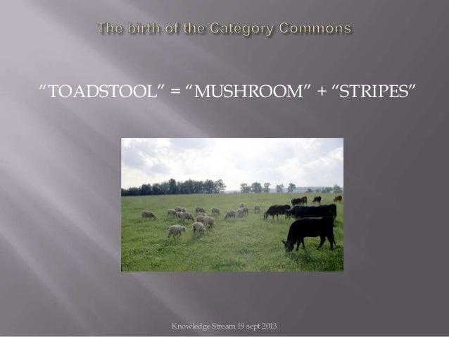 """""""TOADSTOOL"""" = """"MUSHROOM"""" + """"STRIPES"""" Knowledge Stream 19 sept 2013"""