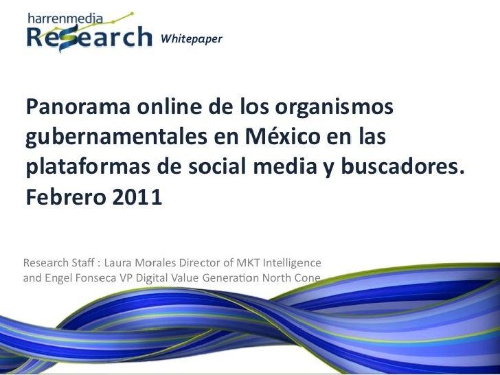 Harrenmedia Research White Paper Panorama Gobierno Online  febrero, 2011