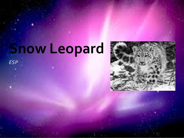 ESPSnow Leopard