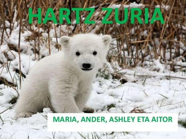 HARTZ ZURIA MARIA, ANDER, ASHLEY ETA AITOR