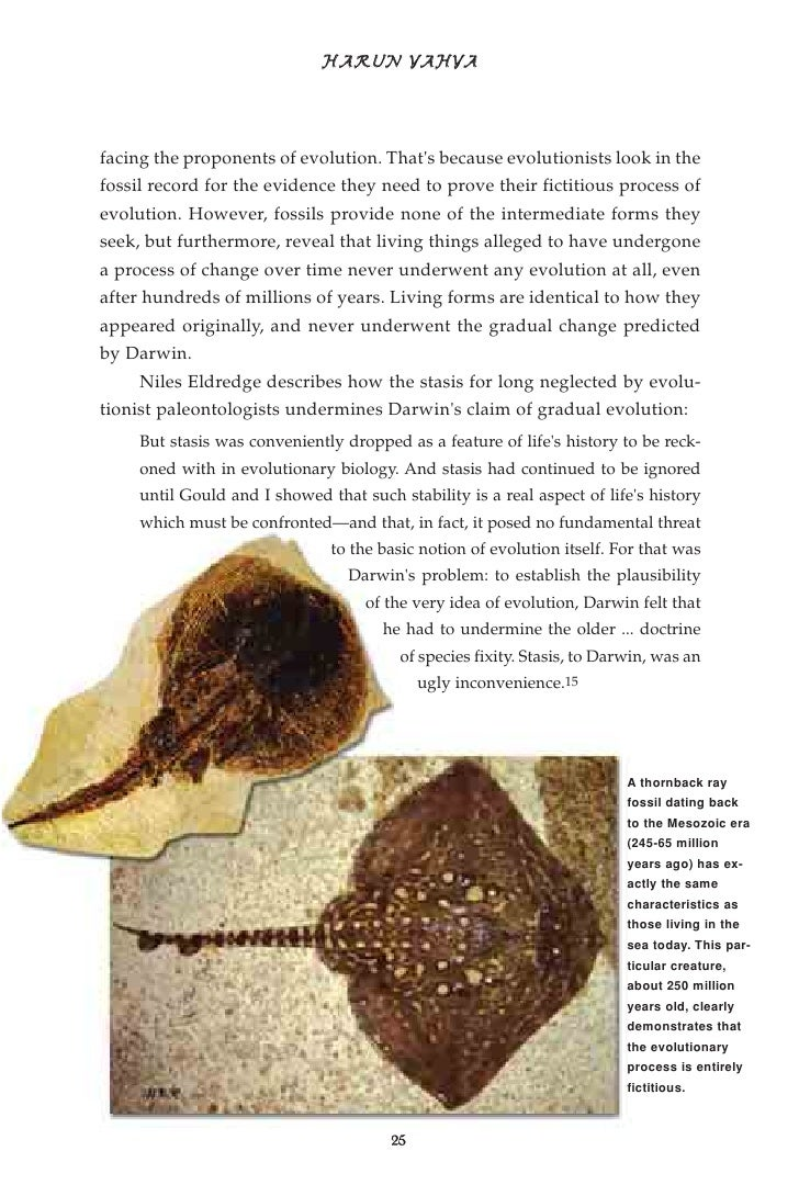 fossil muslim Researchers found more than 150 fossil fragments from the site — an 885-foot-thick (27 m) as a senior writer for live science.