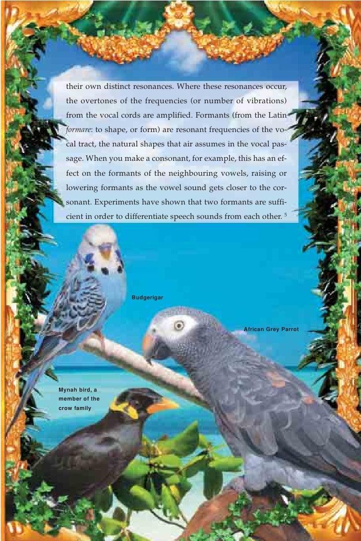 Harun Yahya Islam The Miracle Of Talking Birds