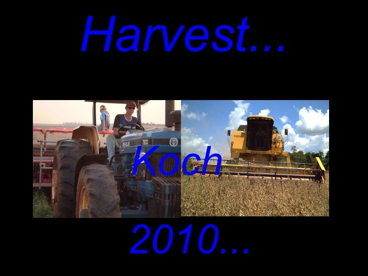 Harvest... <ul><li>2010... </li></ul>Koch