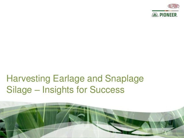 Harvesting Earlage and SnaplageSilage – Insights for Success