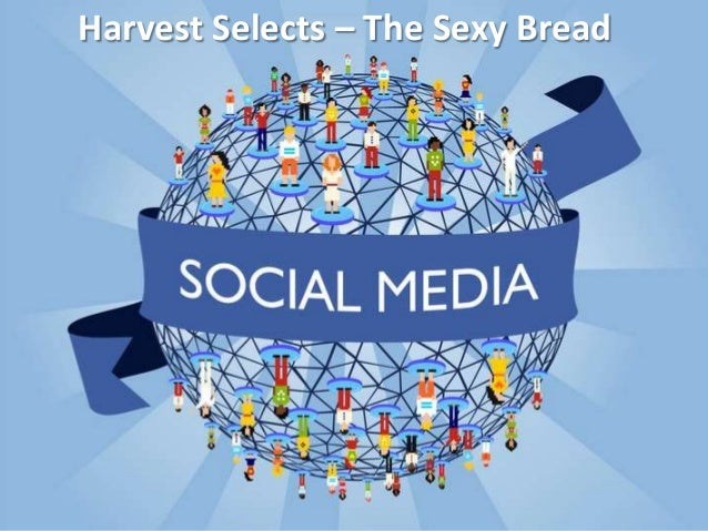 Harvest Selects – The Sexy Bread