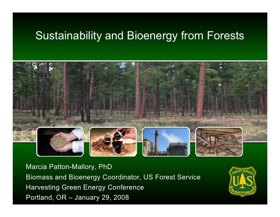 Sustainability and Bioenergy from Forests     Marcia Patton-Mallory, PhD Biomass and Bioenergy Coordinator, US Forest Serv...