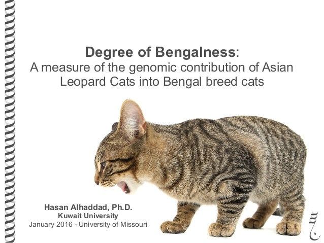 Hasan Alhaddad, Ph.D. Kuwait University January 2016 - University of Missouri Degree of Bengalness: A measure of the genom...