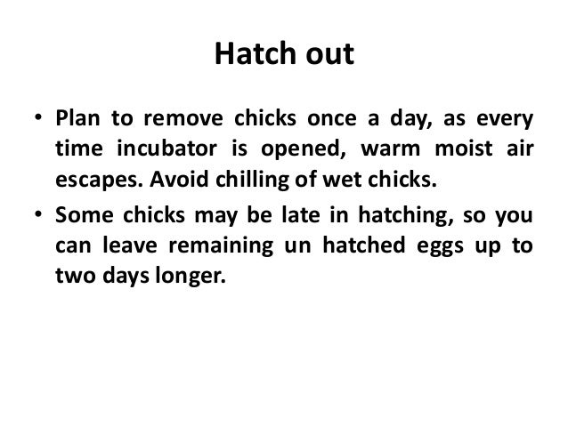 Hatch out • Plan to remove chicks once a day, as every time incubator is opened, warm moist air escapes. Avoid chilling of...