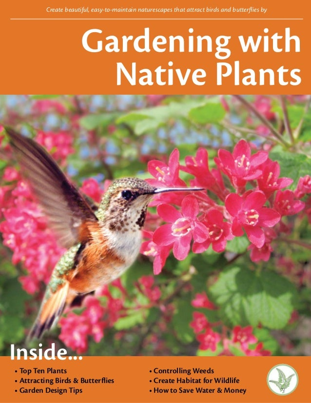 Create beautiful, easy-to-maintain naturescapes that attract birds and butterflies by                       Gardening with...