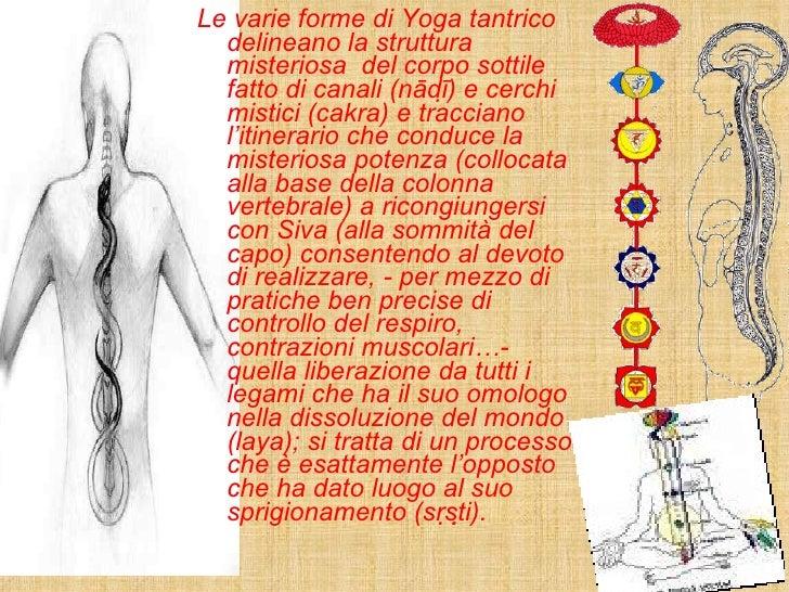 <ul><li>Le varie forme di Yoga tantrico delineano la struttura misteriosa  del corpo sottile fatto di canali (nādī) e cer...