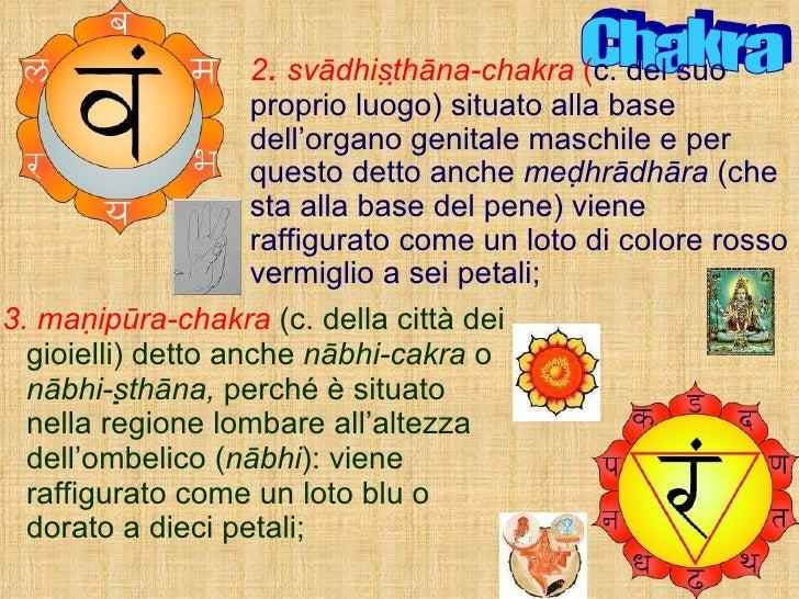<ul><li>3. manipūra-chakra   (c. della città dei gioielli) detto anche  nābhi-cakra  o  nābhi-sthāna,  perché è situato...
