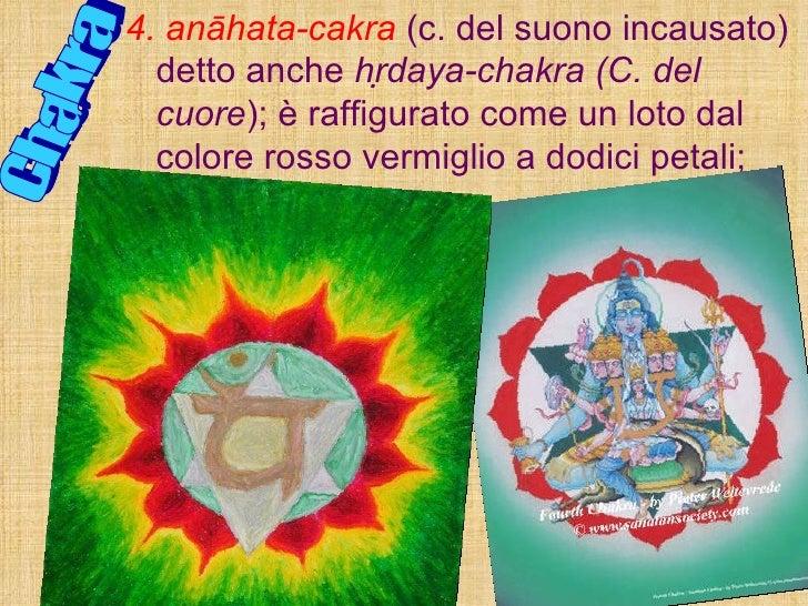 Chakra 4. anāhata-cakra   (c. del suono incausato) detto anche  hrdaya-chakra (C. del cuore ); è raffigurato come un loto...