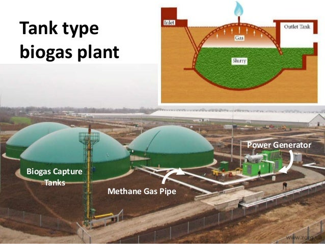 Biomass Presentation By Mr Hauber 2013