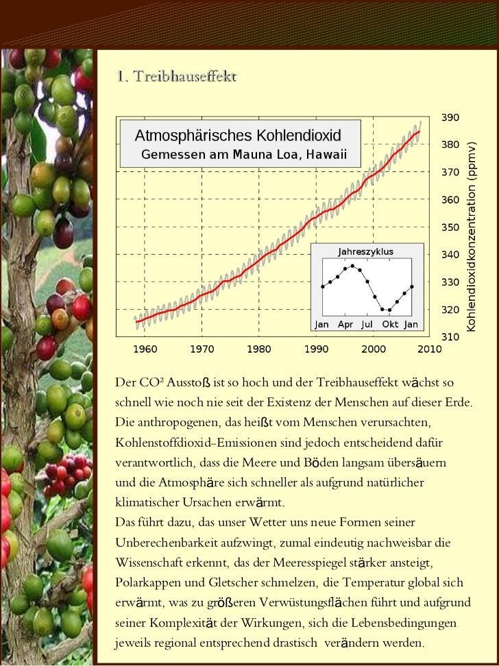 Das Ertragbaum System Slide 3