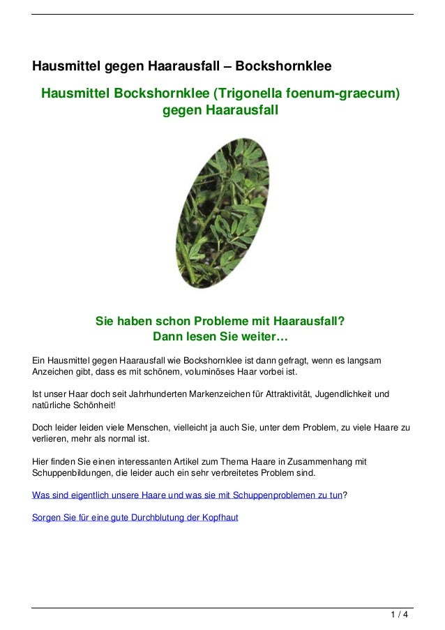 Hausmittel gegen Haarausfall – Bockshornklee  Hausmittel Bockshornklee (Trigonella foenum-graecum)                   gegen...