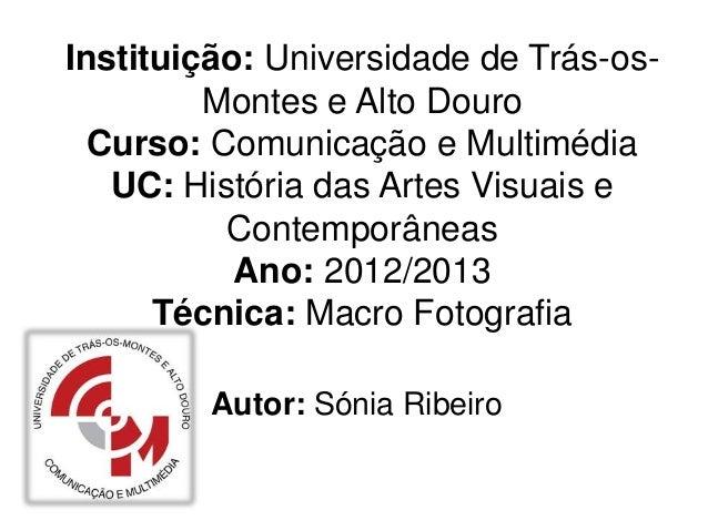Instituição: Universidade de Trás-os-         Montes e Alto Douro  Curso: Comunicação e Multimédia   UC: História das Arte...