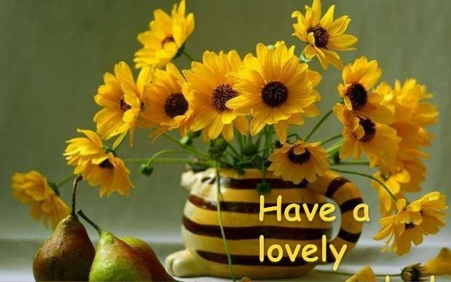 Have A Lovely Day