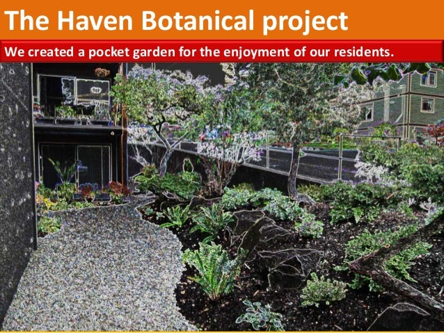 The Haven Botanical project We created a pocket garden for the enjoyment of our residents.