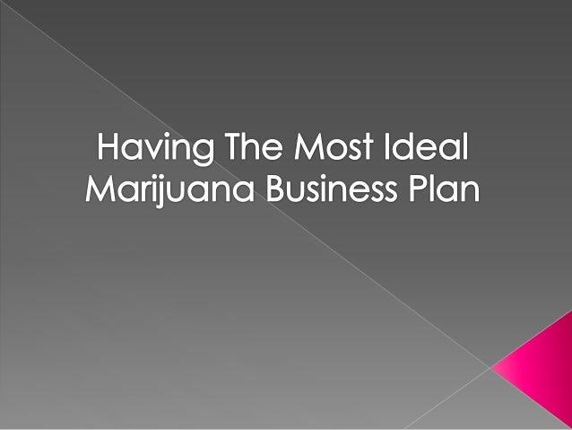Marijuana Business Plan