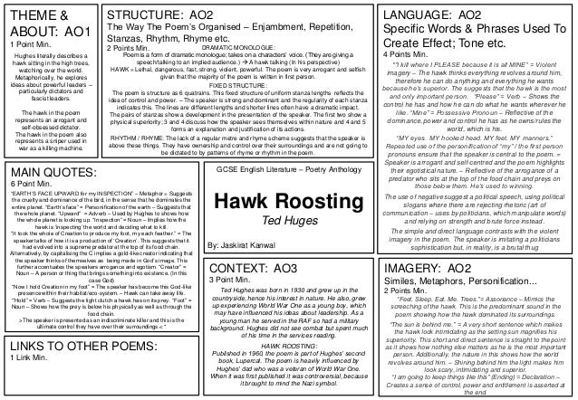 Hawk Roosting Ted Huges Summary Sheet