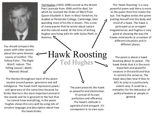 critical appreciation of hawk roosting pdf