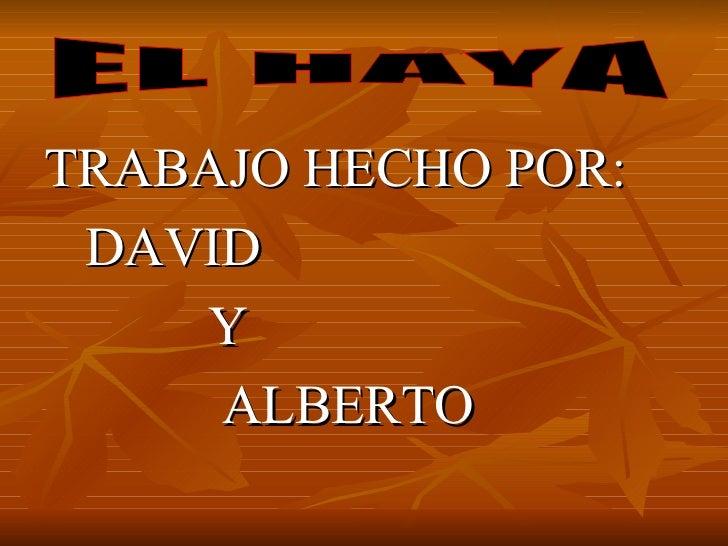 <ul><li>TRABAJO HECHO POR: </li></ul><ul><li>DAVID </li></ul><ul><li>Y  </li></ul><ul><li>ALBERTO </li></ul>EL HAYA