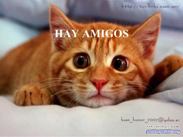HAY AMIGOS