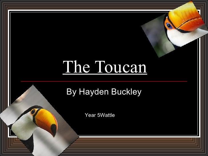 The Toucan By Hayden Buckley Year 5Wattle