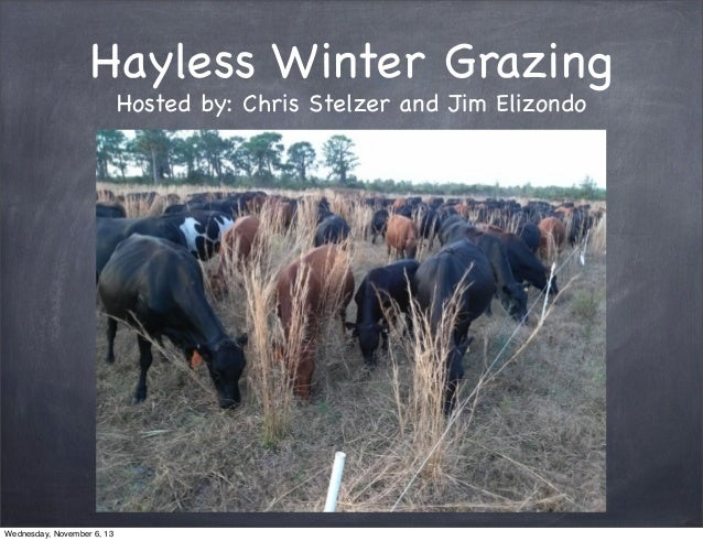 Hayless Winter Grazing Hosted by: Chris Stelzer and Jim Elizondo  Wednesday, November 6, 13