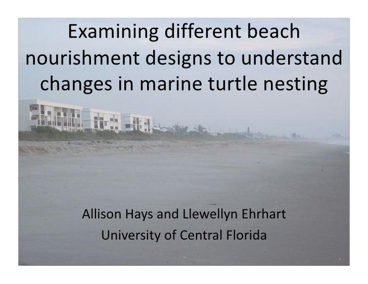 Examiningdifferentbeachnourishmentdesignstounderstand changesinmarineturtlenesting     AllisonHaysandLlewel...