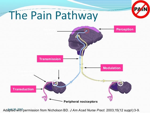 non steroidal anti inflammatory drugs brand names