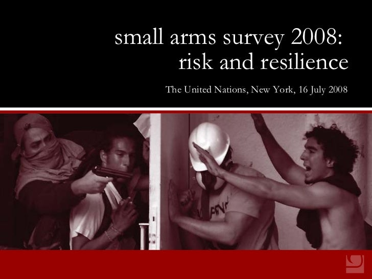 small arms survey 2008: risk and resilience small arms survey 2008:   risk and resilience The United Nations, New York, 16...