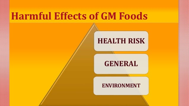 negative effects of gmo foods How do genetically modified foods affect you don't have to look hard to find genetically modified food on and research on their long-term effects on.