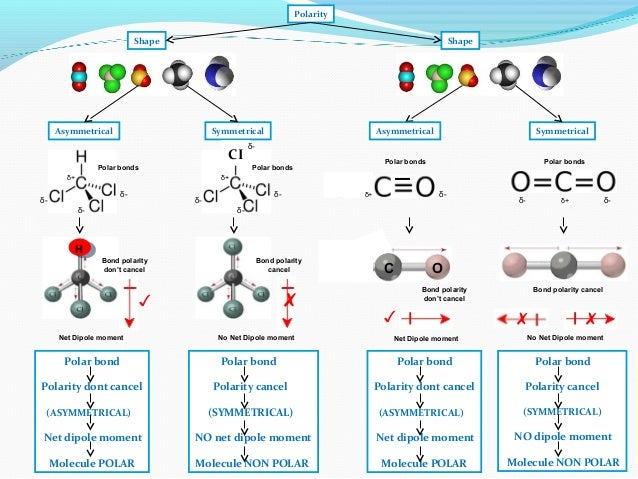 Ib Chemistry On Polarity Hydrogen Bonding And Van Der Waals Forces