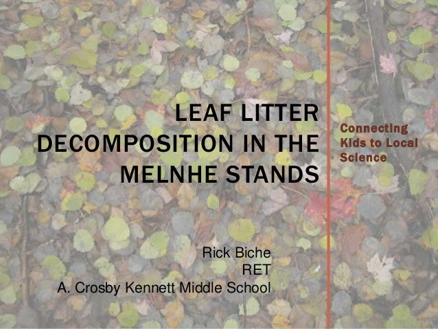 Connecting Kids to Local Science LEAF LITTER DECOMPOSITION IN THE MELNHE STANDS Rick Biche RET A. Crosby Kennett Middle Sc...